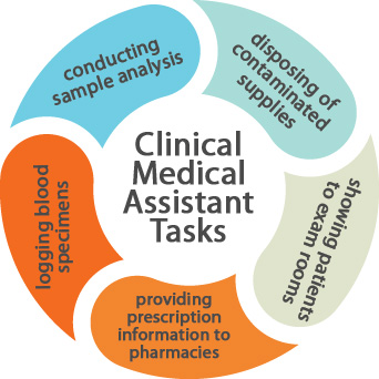 What do Clinical Medical Assistants do?